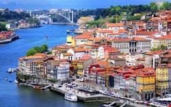 Porto Şehir Rehberi