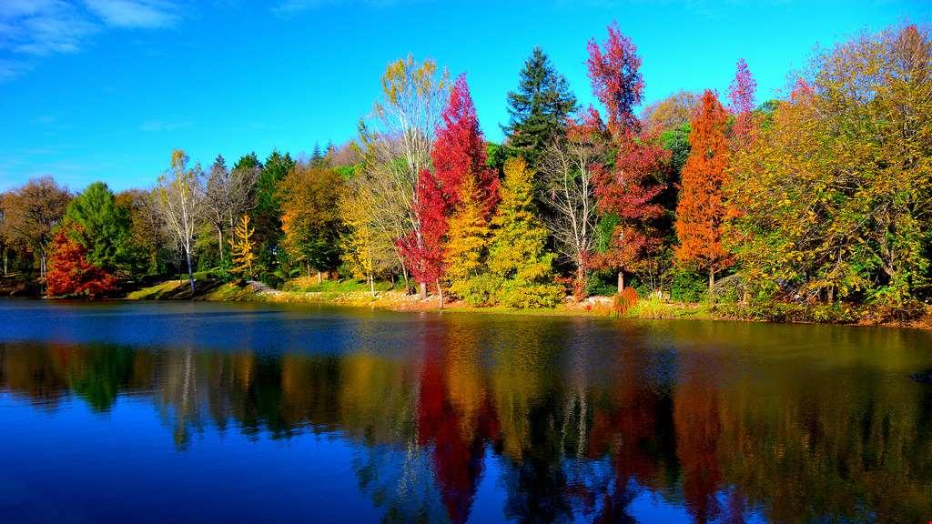 sonbaharda-yurt-icinde-gidilebilecek-en-iyi-yerler