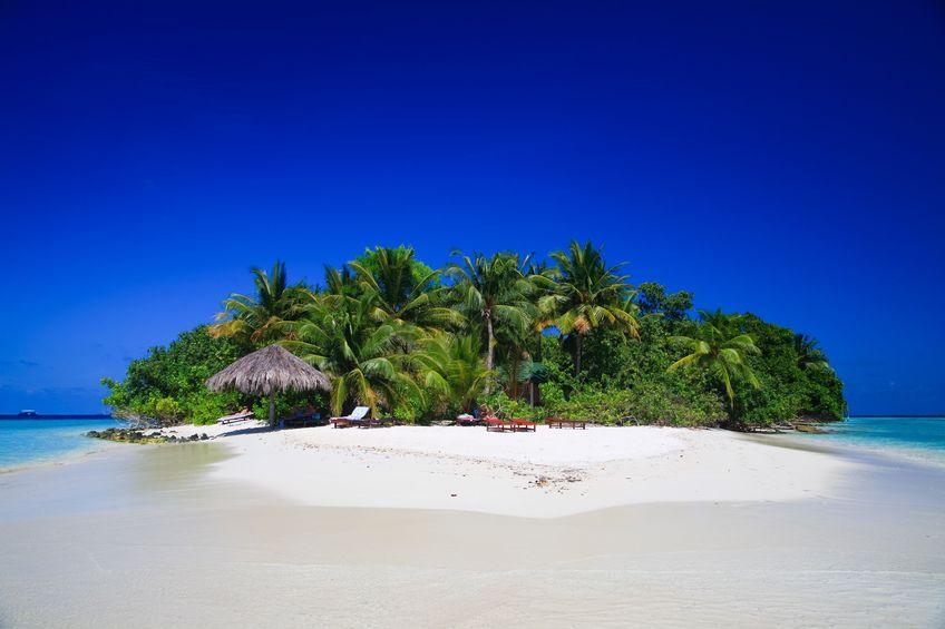 [Resim: tropik003.jpg]