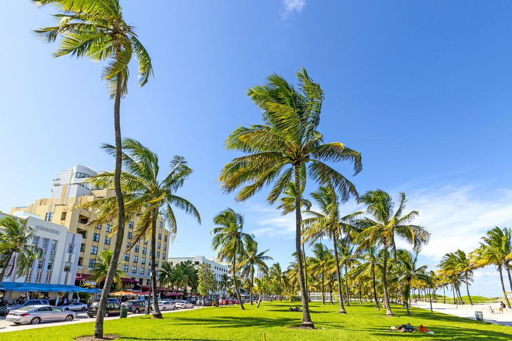 Miami şehir rehberi-4