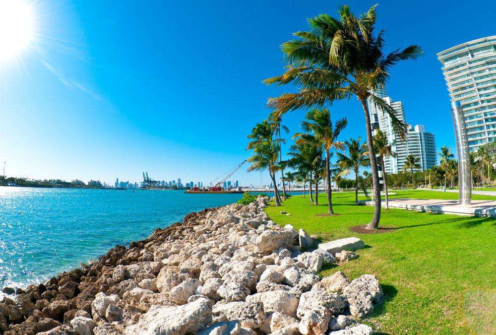 Miami Ne Yapılır-7